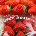 Ichigo_s03_2